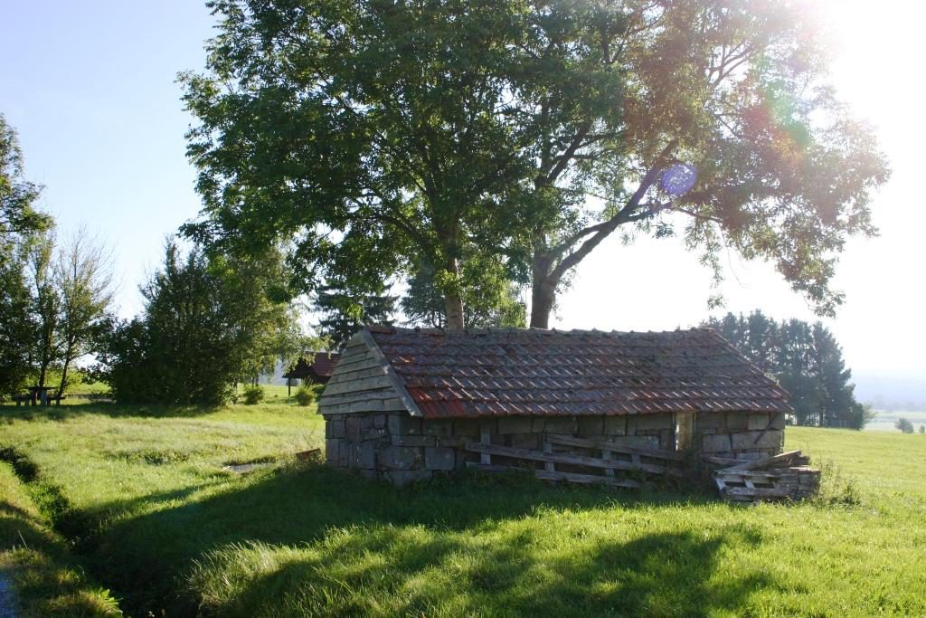 wandertour-gersfeld-guckaisee-pferdskopf-wasserkuppe-008