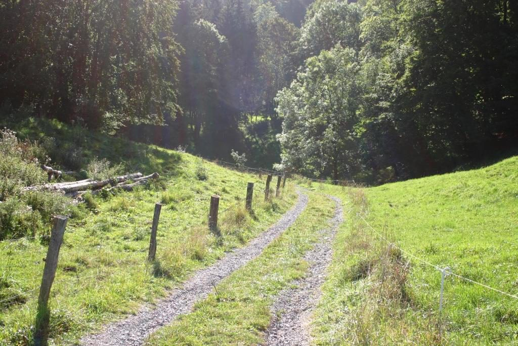 wandertour-gersfeld-guckaisee-pferdskopf-wasserkuppe-017