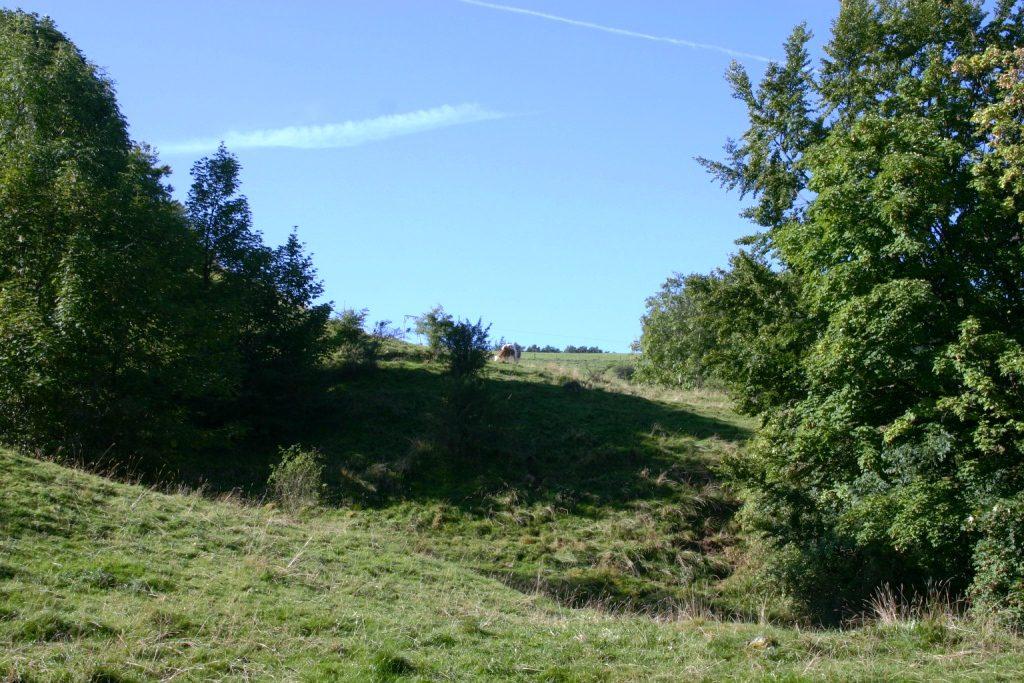 wandertour-gersfeld-guckaisee-pferdskopf-wasserkuppe-019