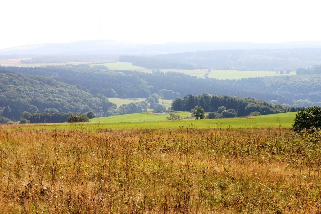 wandertour-gersfeld-guckaisee-pferdskopf-wasserkuppe-027