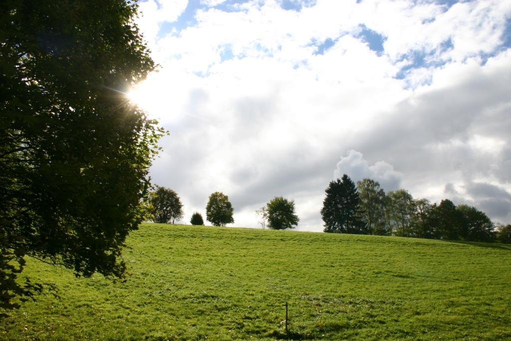 berghuette-wildpark-gersfeld_09